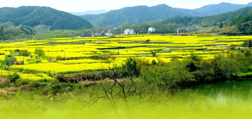 申论热点:发展乡村旅游