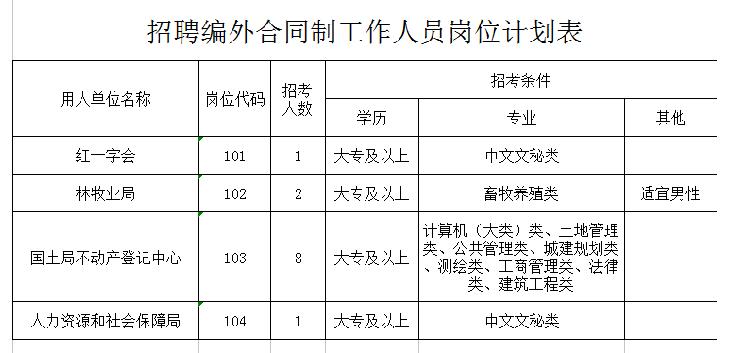 招聘编外合同制工作人员岗位计划表
